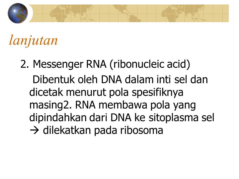 lanjutan 2. Messenger RNA (ribonucleic acid)