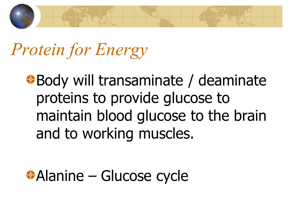 Protein for Energy Body will transaminate / deaminate proteins to provide glucose to maintain blood glucose to the brain and to working muscles.