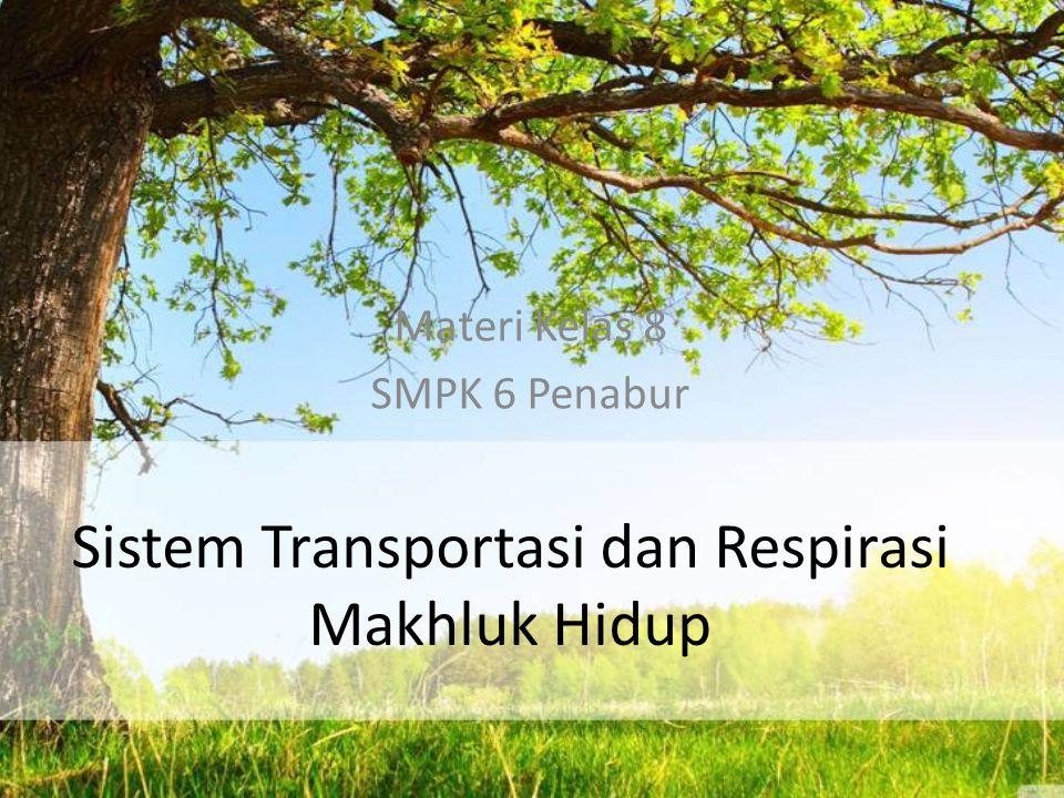 Sistem Transportasi dan Respirasi Makhluk Hidup