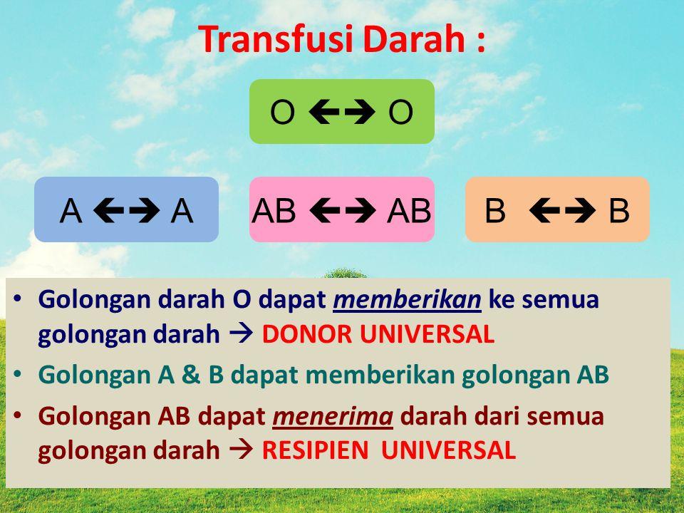 Transfusi Darah : O  O A  A AB  AB B  B