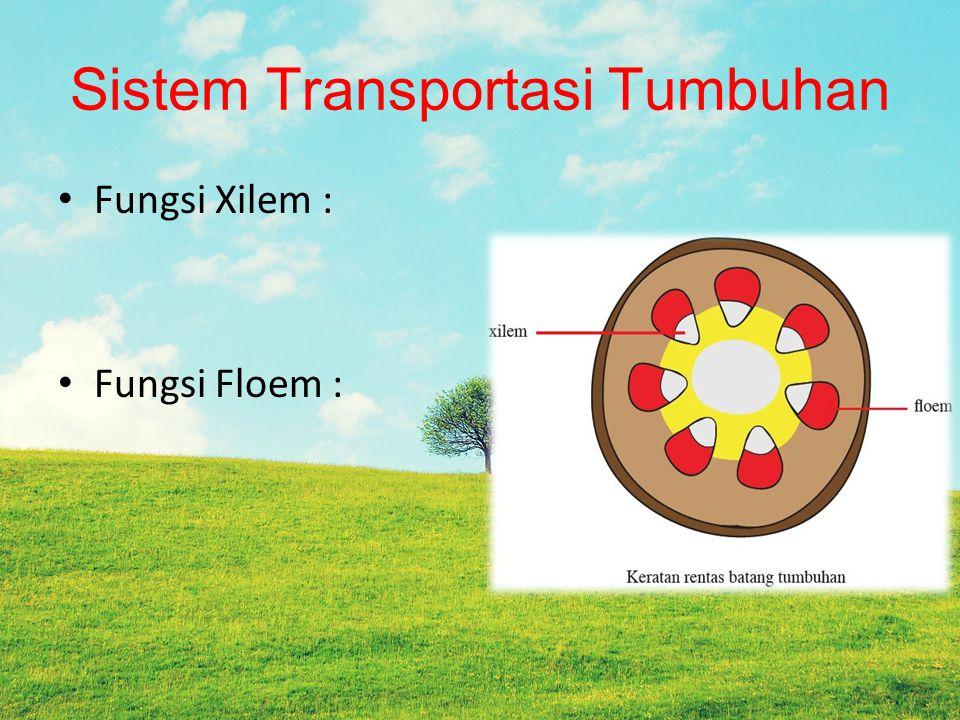 Sistem Transportasi Tumbuhan