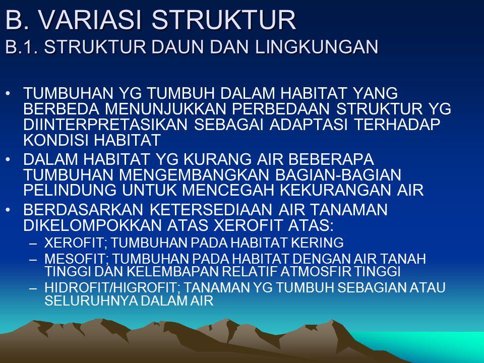 B. VARIASI STRUKTUR B.1. STRUKTUR DAUN DAN LINGKUNGAN