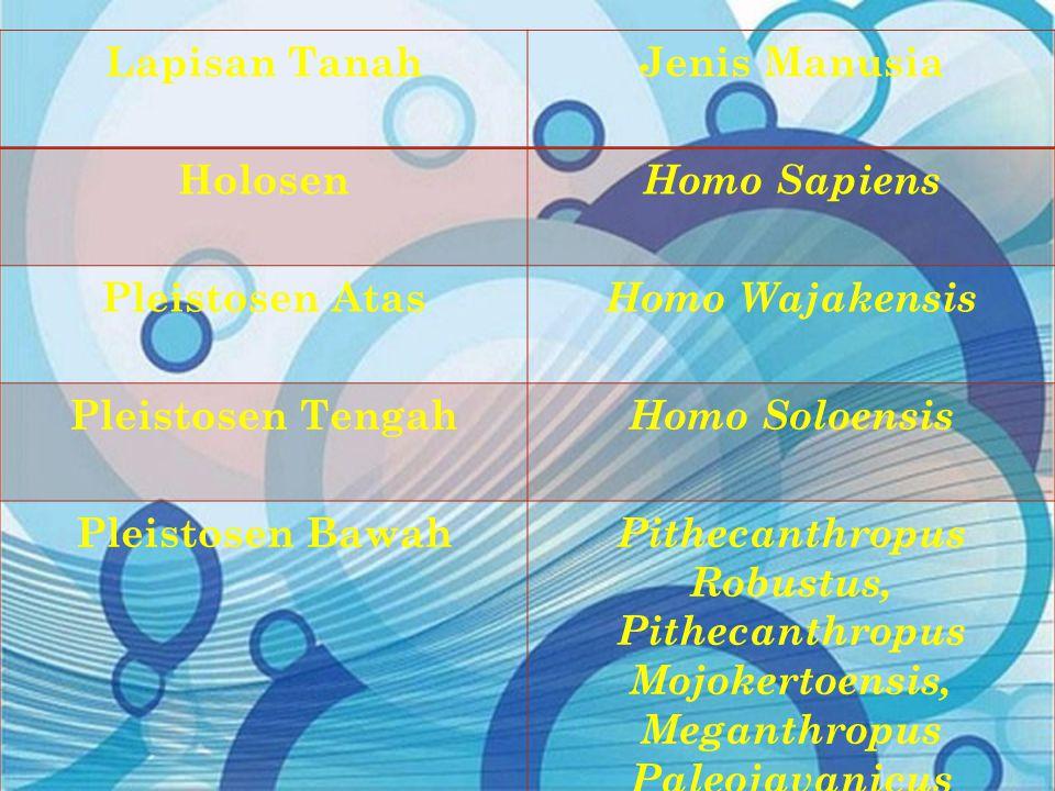 Lapisan Tanah Jenis Manusia. Holosen. Homo Sapiens. Pleistosen Atas. Homo Wajakensis. Pleistosen Tengah.