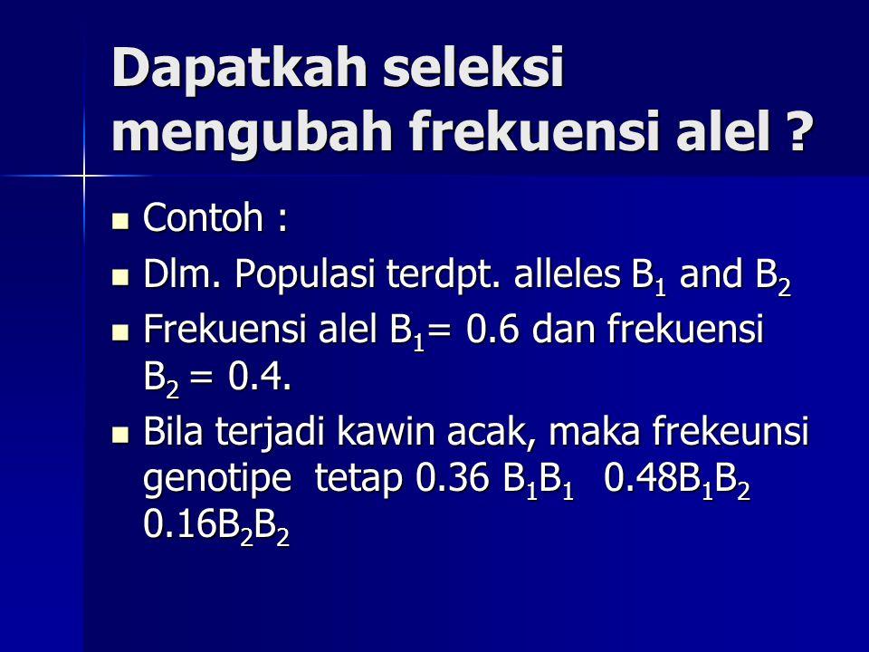 Dapatkah seleksi mengubah frekuensi alel