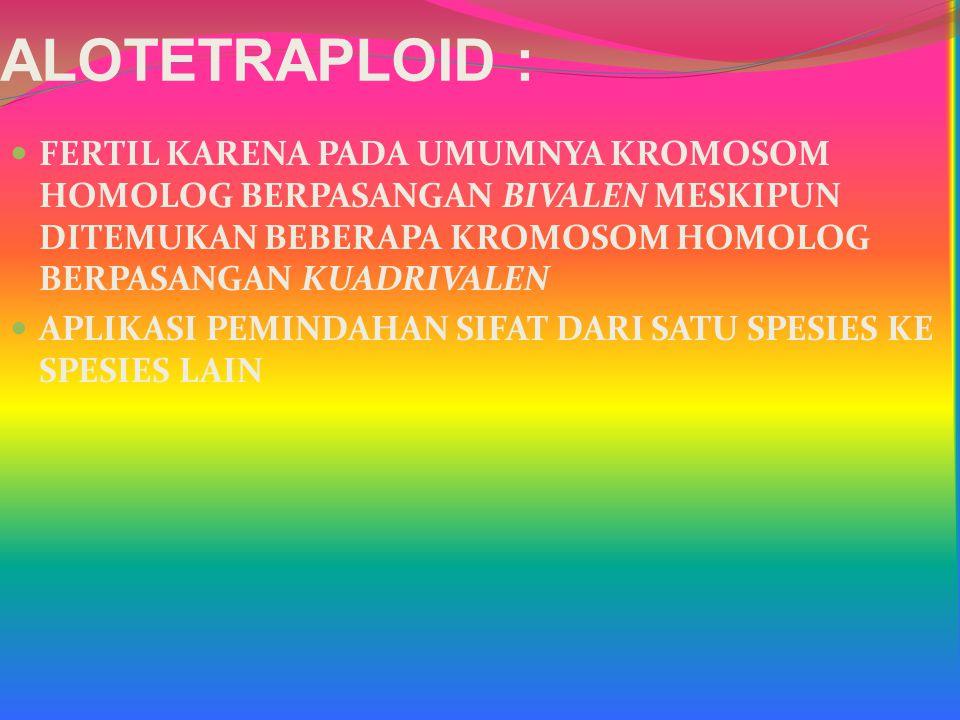 ALOTETRAPLOID : FERTIL KARENA PADA UMUMNYA KROMOSOM HOMOLOG BERPASANGAN BIVALEN MESKIPUN DITEMUKAN BEBERAPA KROMOSOM HOMOLOG BERPASANGAN KUADRIVALEN.