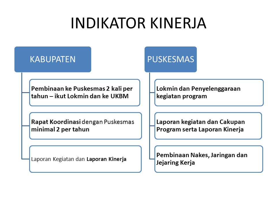 INDIKATOR KINERJA KABUPATEN. Pembinaan ke Puskesmas 2 kali per tahun – ikut Lokmin dan ke UKBM.