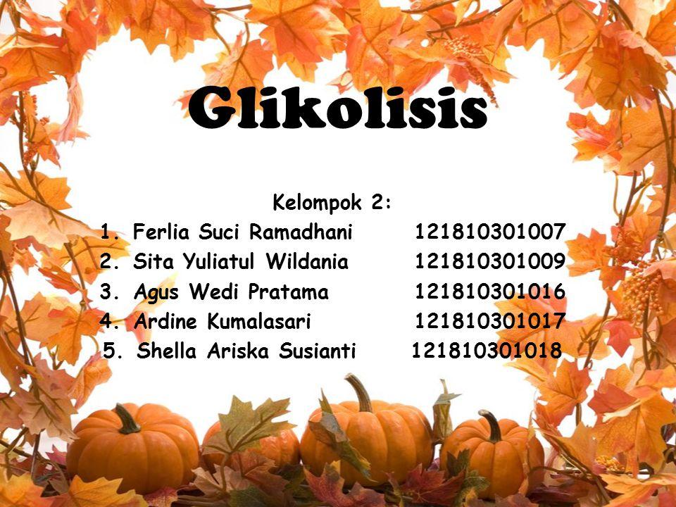 Glikolisis Kelompok 2: Ferlia Suci Ramadhani 121810301007
