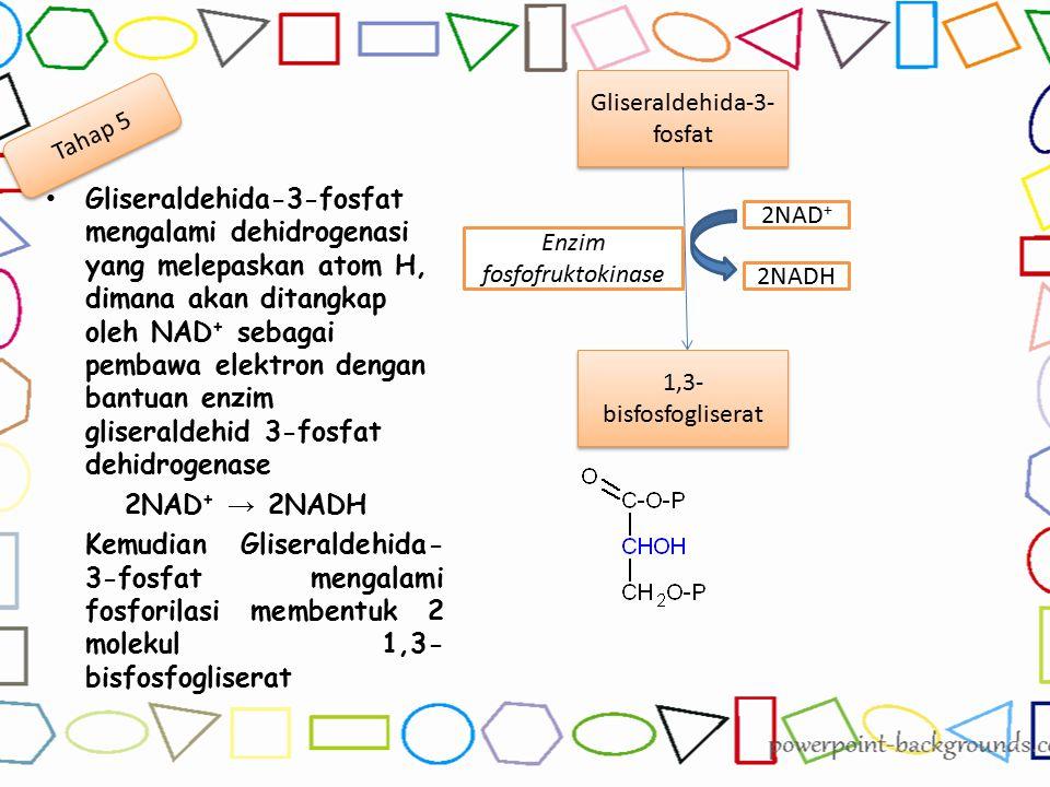 Gliseraldehida-3-fosfat