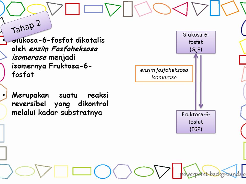 enzim fosfoheksosa isomerase