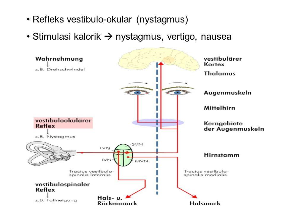 Refleks vestibulo-okular (nystagmus)