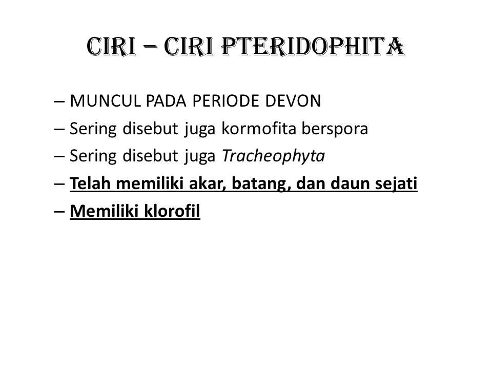 CIRI – CIRI PTERIDOPHITA