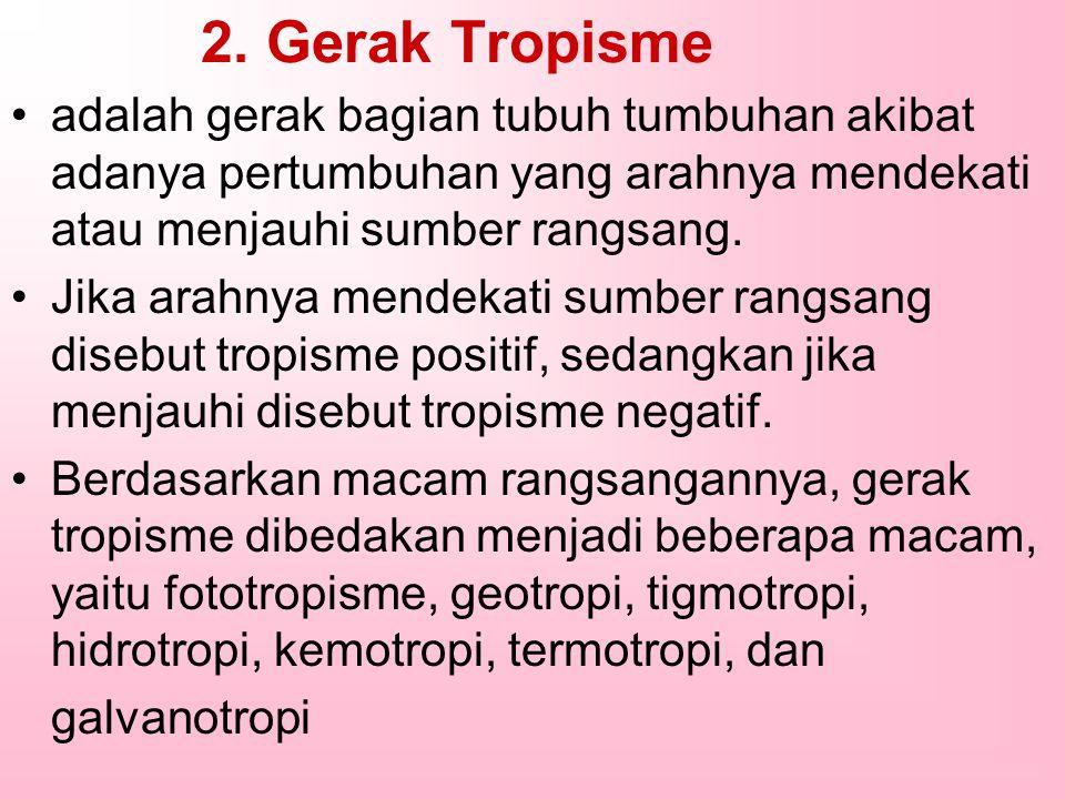2. Gerak Tropisme adalah gerak bagian tubuh tumbuhan akibat adanya pertumbuhan yang arahnya mendekati atau menjauhi sumber rangsang.