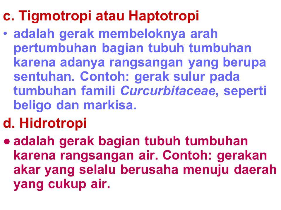 c. Tigmotropi atau Haptotropi