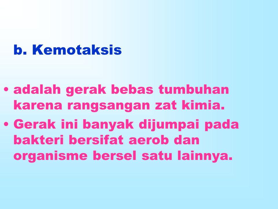 b. Kemotaksis adalah gerak bebas tumbuhan karena rangsangan zat kimia.
