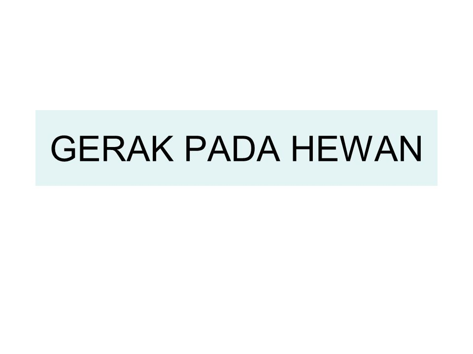 GERAK PADA HEWAN