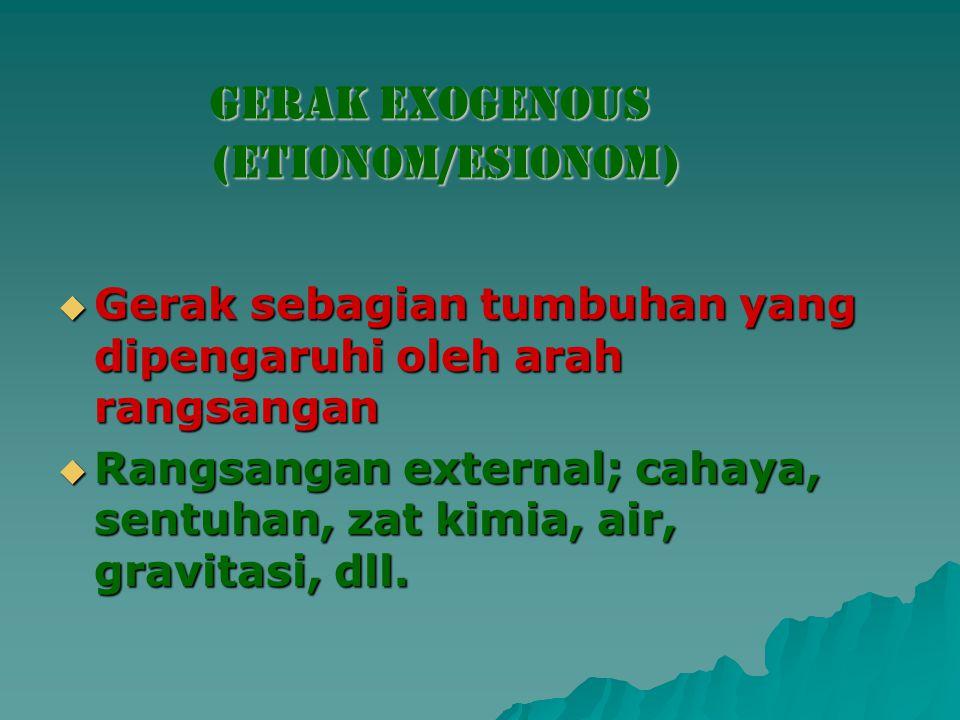 Gerak exogenous (ETIONOM/ESIONOM)