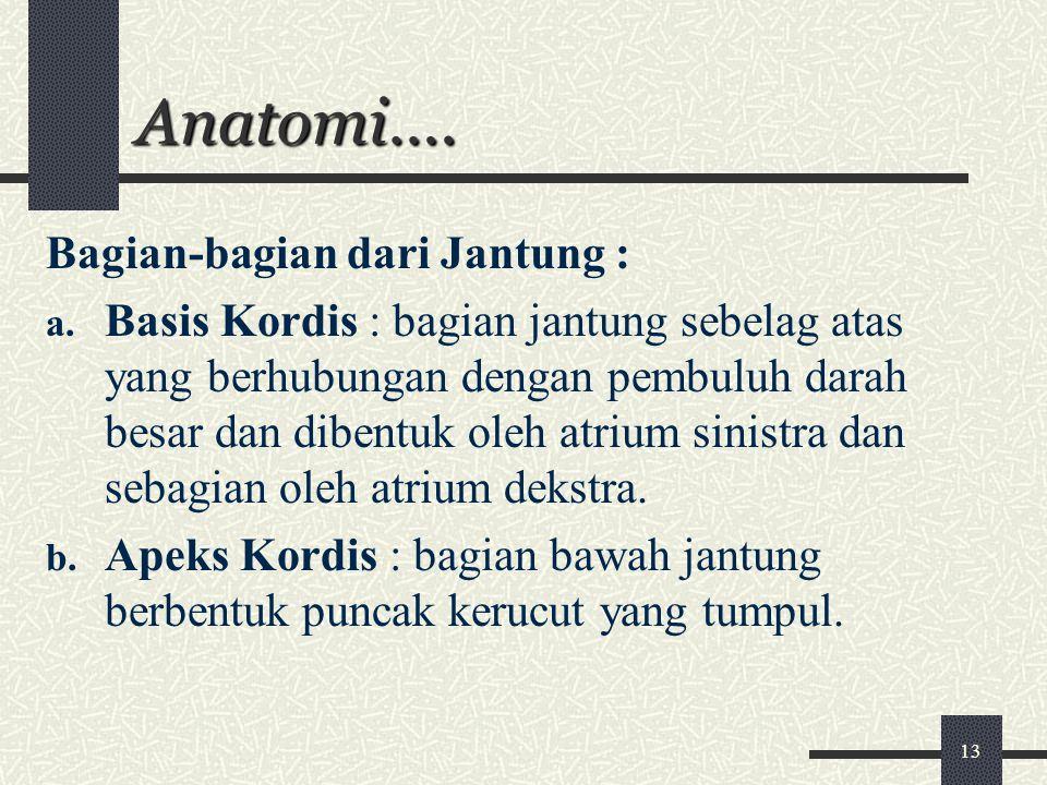Anatomi…. Bagian-bagian dari Jantung :