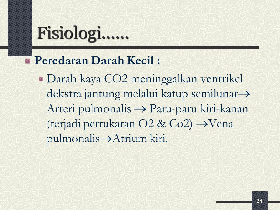 Fisiologi...... Peredaran Darah Kecil :