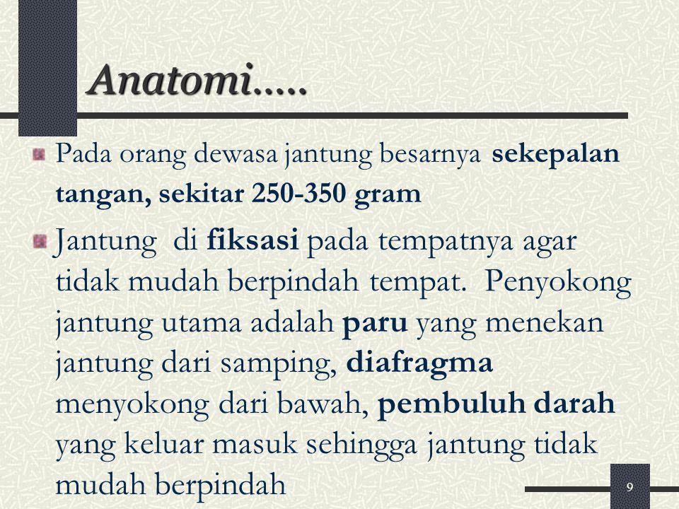 Anatomi….. Pada orang dewasa jantung besarnya sekepalan tangan, sekitar 250-350 gram.