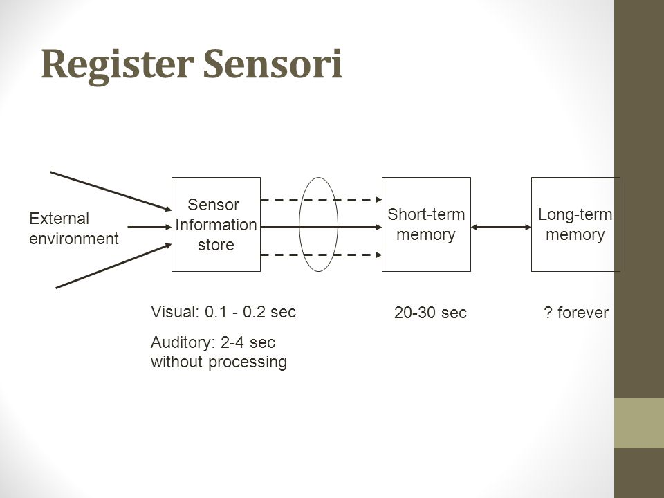 Register Sensori Sensor Information store Short-term memory Long-term