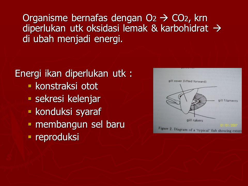 Organisme bernafas dengan O2  CO2, krn diperlukan utk oksidasi lemak & karbohidrat  di ubah menjadi energi.