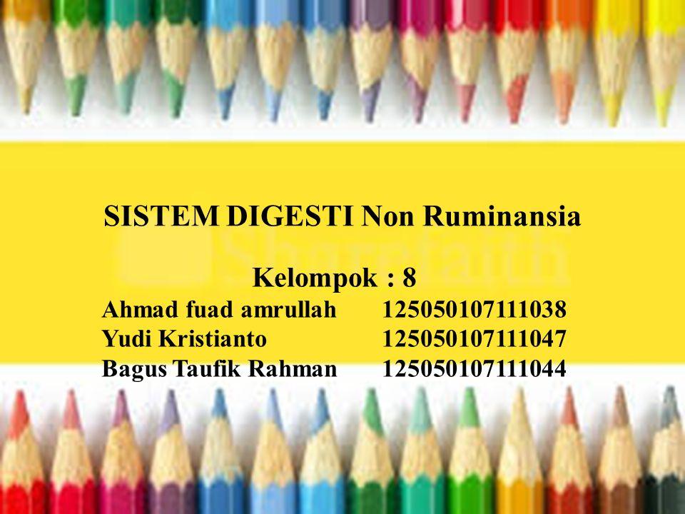 SISTEM DIGESTI Non Ruminansia