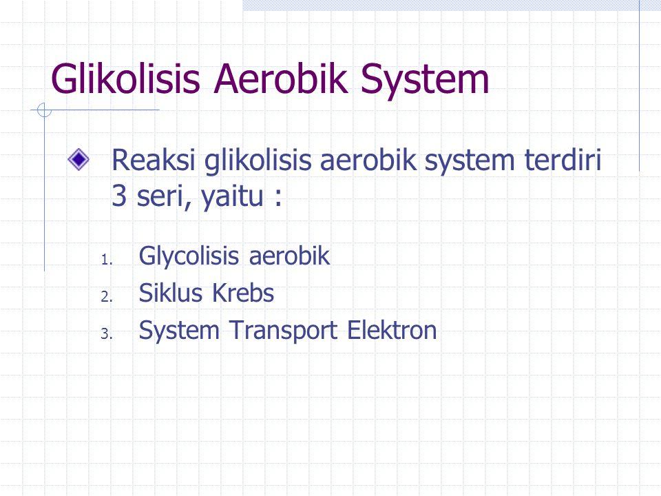 Glikolisis Aerobik System