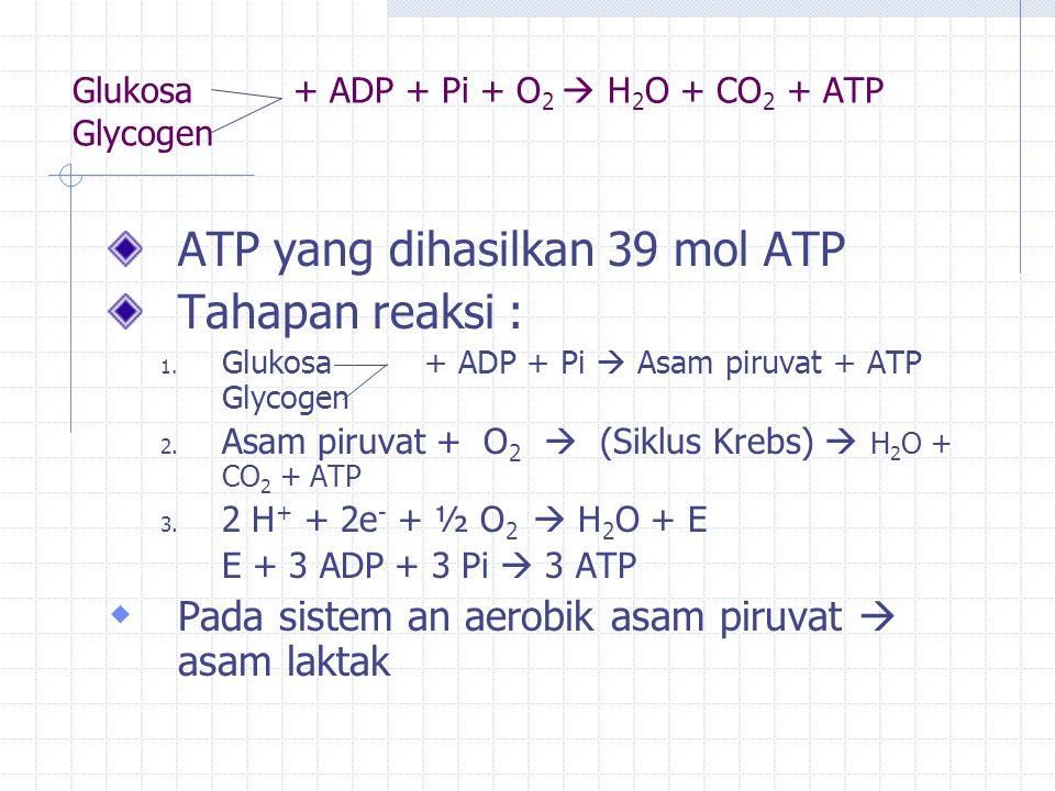 Glukosa + ADP + Pi + O2  H2O + CO2 + ATP Glycogen
