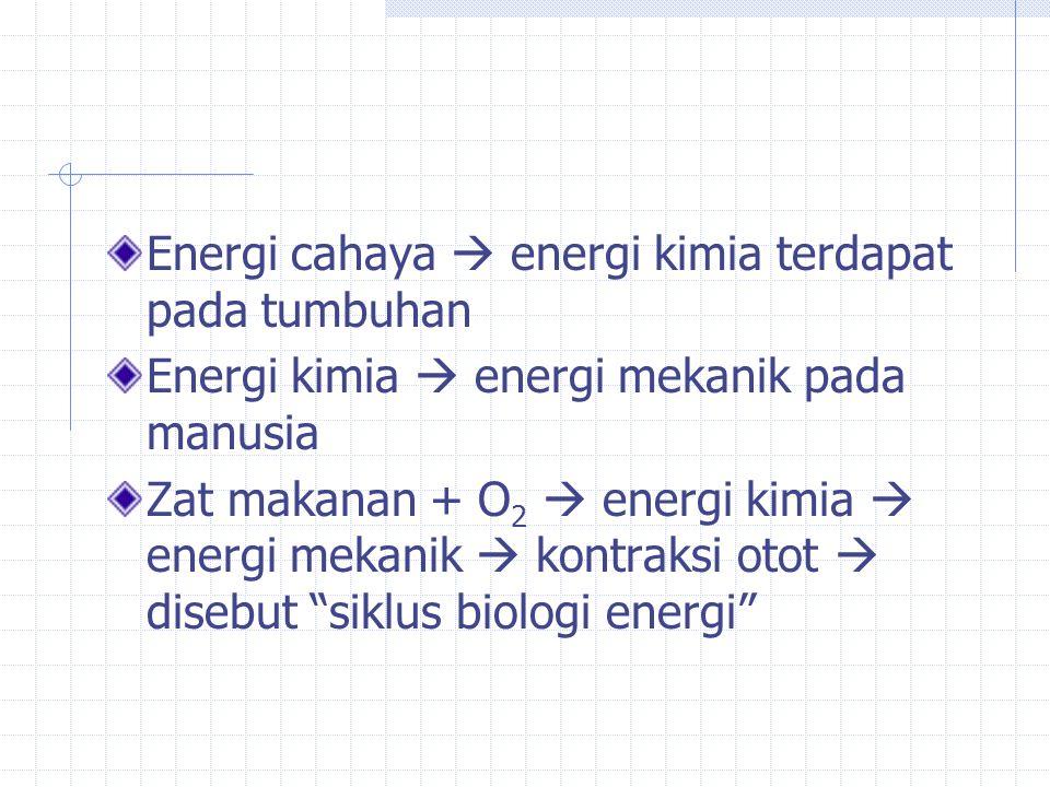 Energi cahaya  energi kimia terdapat pada tumbuhan