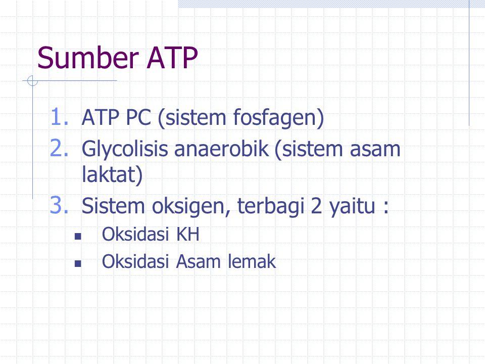 Sumber ATP ATP PC (sistem fosfagen)