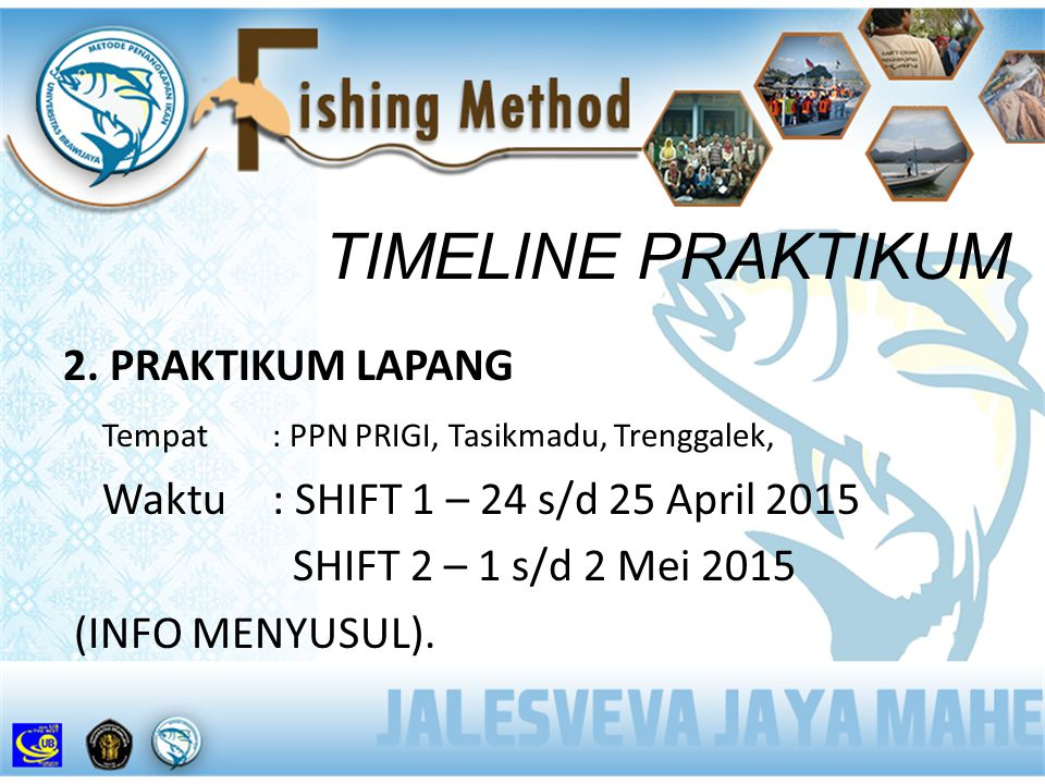 TIMELINE PRAKTIKUM