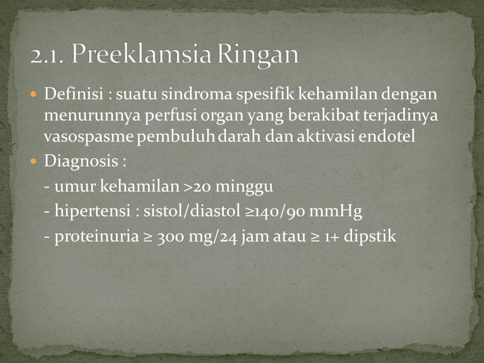 2.1. Preeklamsia Ringan