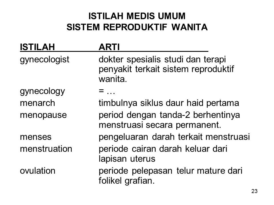 ISTILAH MEDIS UMUM SISTEM REPRODUKTIF WANITA