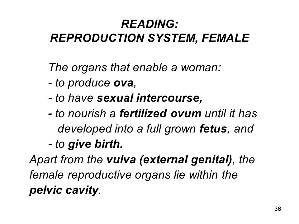 READING: REPRODUCTION SYSTEM, FEMALE