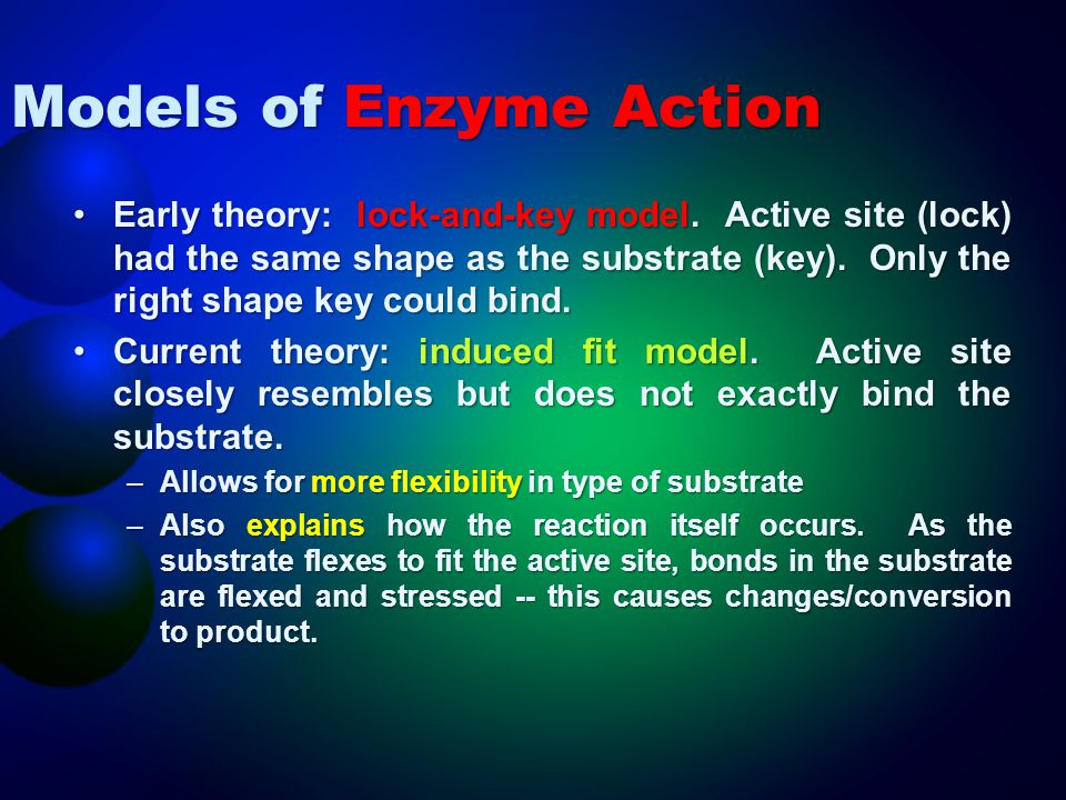 Models of Enzyme Action