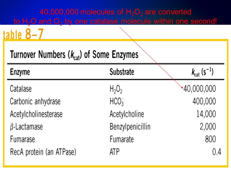40,000,000 molecules of H2O2 are converted