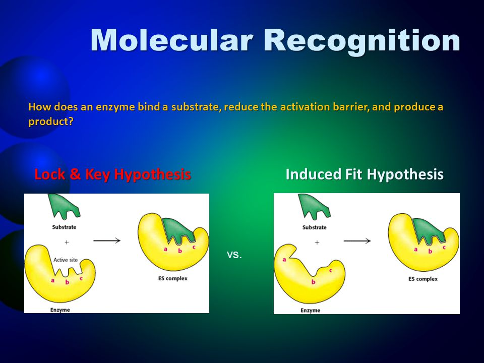Molecular Recognition