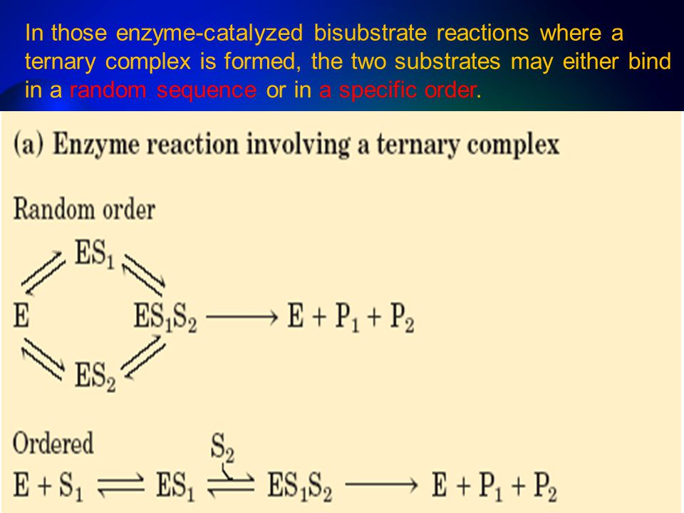 In those enzyme-catalyzed bisubstrate reactions where a