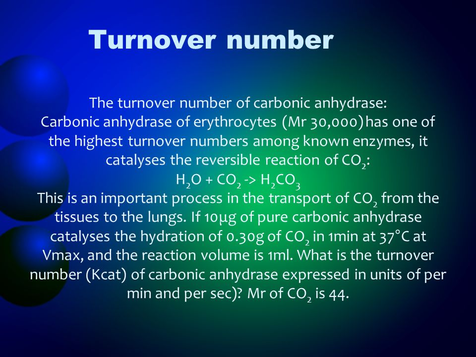 The turnover number of carbonic anhydrase: