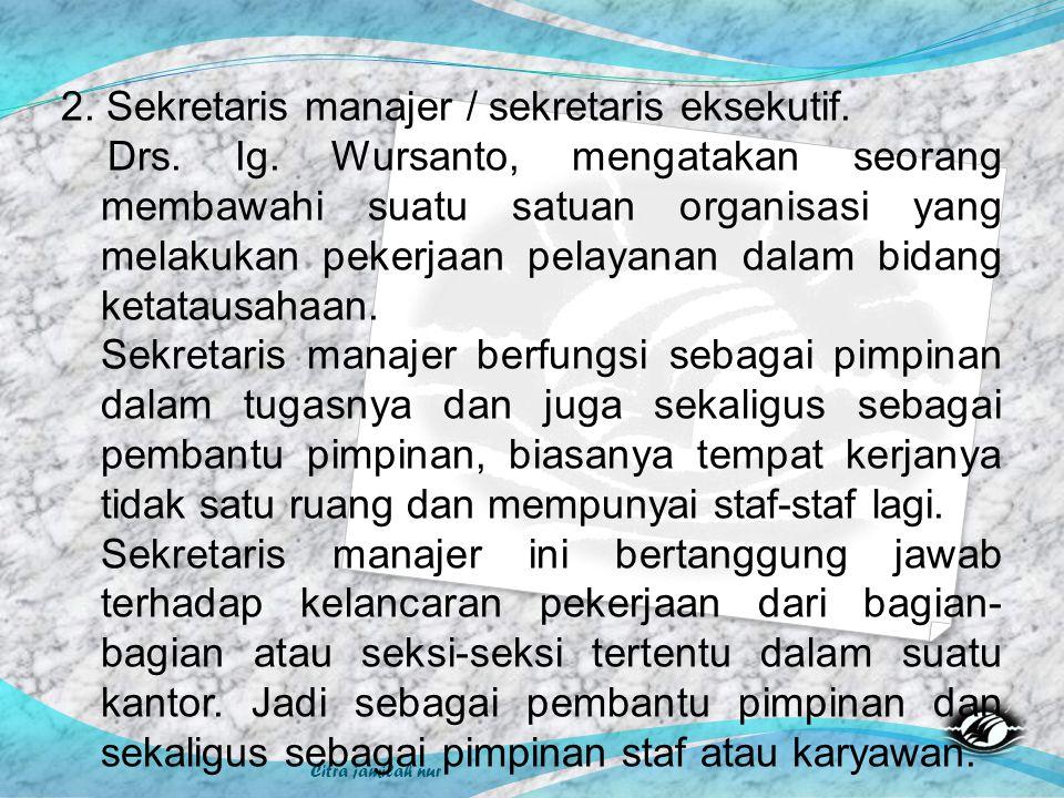 2. Sekretaris manajer / sekretaris eksekutif.