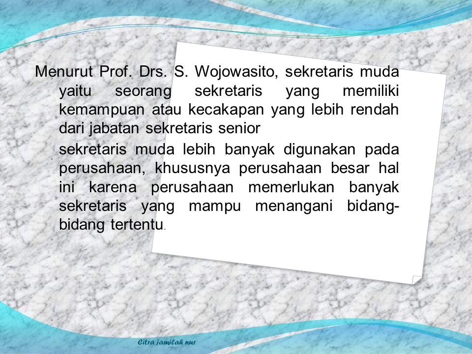 Menurut Prof. Drs. S. Wojowasito, sekretaris muda yaitu seorang sekretaris yang memiliki kemampuan atau kecakapan yang lebih rendah dari jabatan sekretaris senior