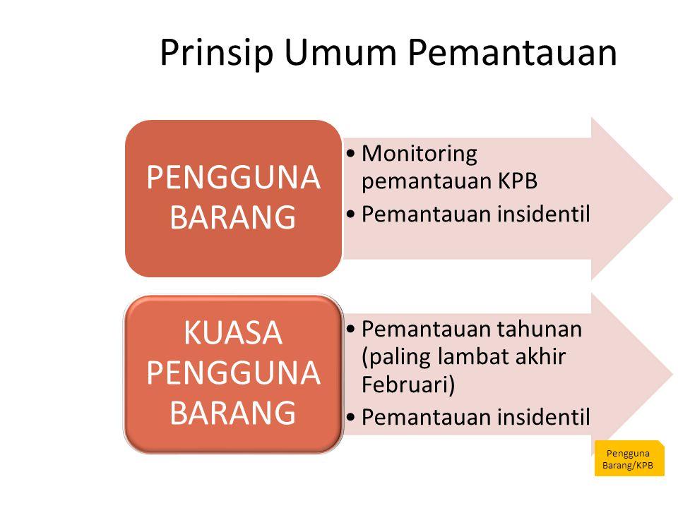 Prinsip Umum Pemantauan