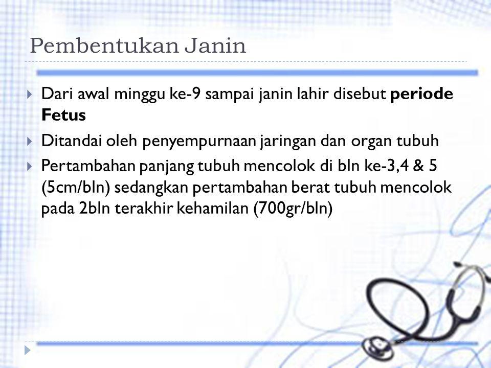 Pembentukan Janin Dari awal minggu ke-9 sampai janin lahir disebut periode Fetus. Ditandai oleh penyempurnaan jaringan dan organ tubuh.