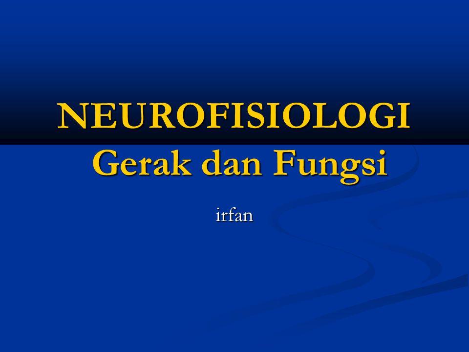 NEUROFISIOLOGI Gerak dan Fungsi