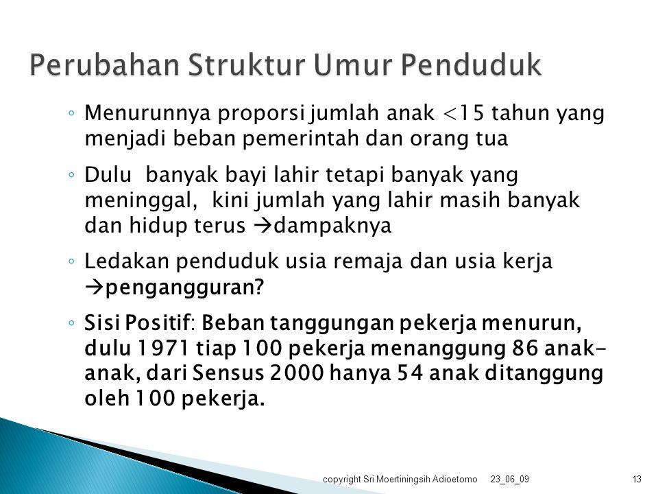Perubahan Struktur Umur Penduduk