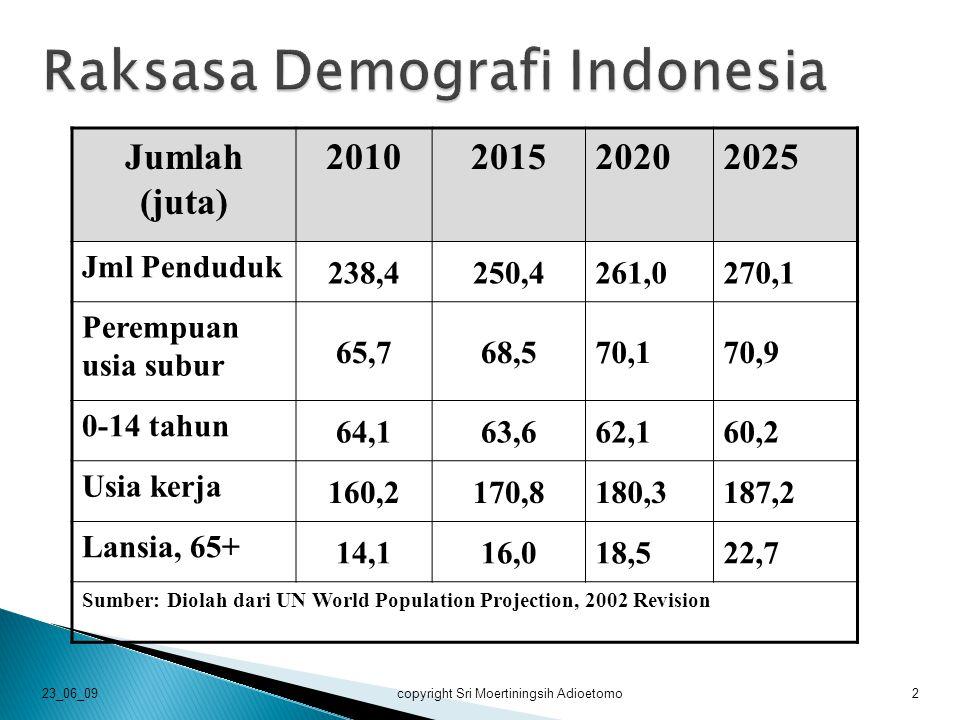 Raksasa Demografi Indonesia