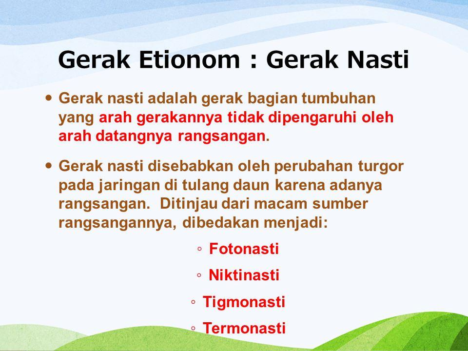 Gerak Etionom : Gerak Nasti