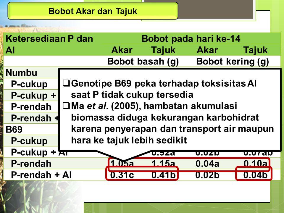 Genotipe B69 peka terhadap toksisitas Al saat P tidak cukup tersedia