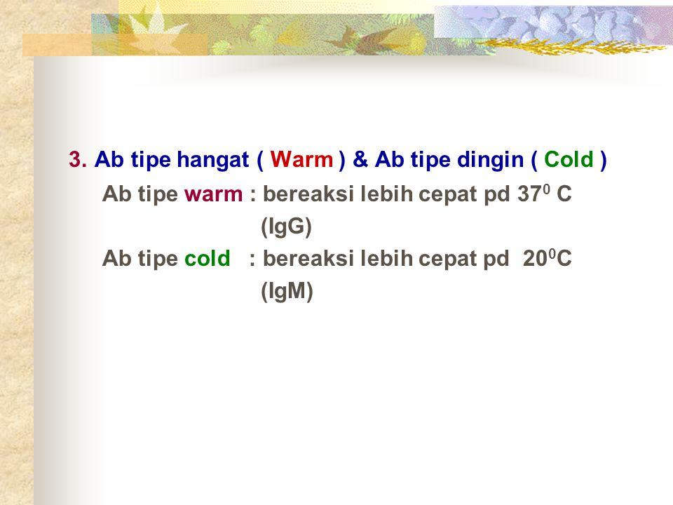 3. Ab tipe hangat ( Warm ) & Ab tipe dingin ( Cold )