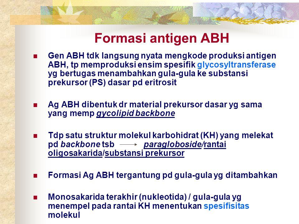 Formasi antigen ABH